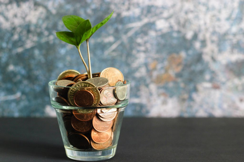 Glass of coins with a small green sprout.